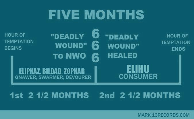 5 month JOB 3